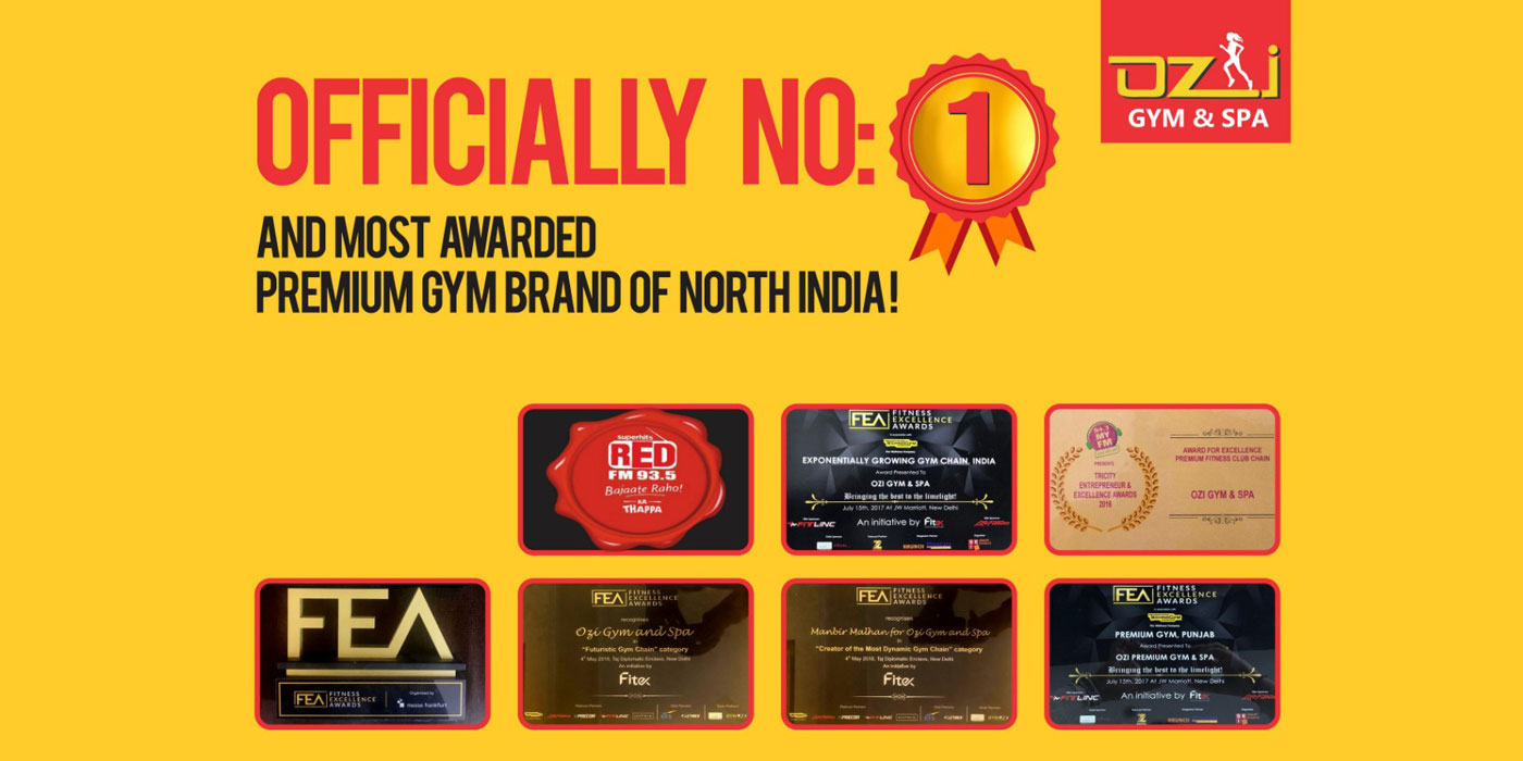 Ozi Gym & Spa   Top & Best Gym in Chandigarh,Mohali